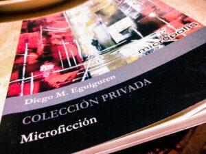 Colección privada: reseña de Juan Carlos Suárez Revollar